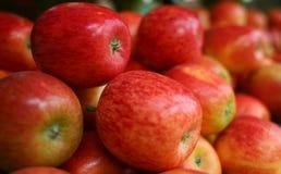 Nytt materiel av äpplet Arkivfoto