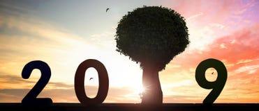 Nytt miljö- begrepp: nytt hopp i 2019 royaltyfri foto