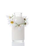 nytt mjölka Royaltyfri Bild