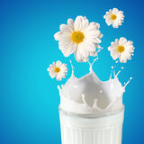 Nytt mjölka i exponeringsglaset Royaltyfri Bild