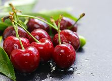 nytt moget för Cherry royaltyfri bild