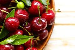 nytt moget för Cherry royaltyfri foto