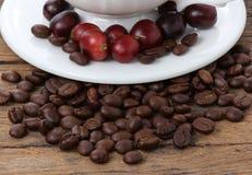 Nytt och grillat kaffe arkivfoto