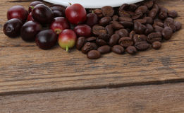 Nytt och grillat kaffe royaltyfria bilder