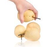Nytt och saftigt kinesiskt päron på isoleringsbakgrund Arkivfoto