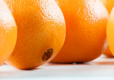 nytt orange moget Royaltyfri Fotografi