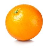 nytt orange moget Royaltyfria Bilder