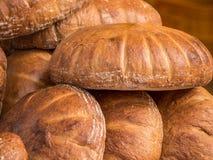Nytt organiskt bröd Royaltyfri Foto