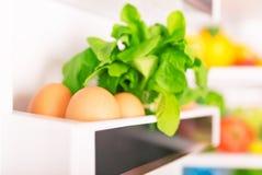 nytt organiskt för mat royaltyfri bild