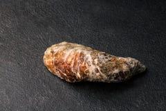Nytt, rå och enkla ostron på en svart bakgrund Kylde rå ostron Läckert tropiskt havsblötdjur kopiera avstånd Royaltyfri Fotografi