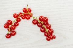 Nytt rått bär för röd vinbär på grått trä royaltyfri foto