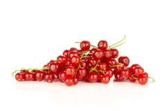 Nytt rått bär för röd vinbär som isoleras på vit royaltyfri foto