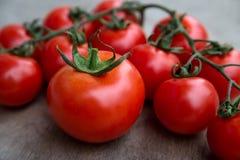 Nytt rött - läckra tomater på en gammal trätabletopbackgrou Royaltyfri Bild