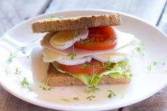 Nytt rostat bröd med grönsaker, ost och skinka Royaltyfria Bilder