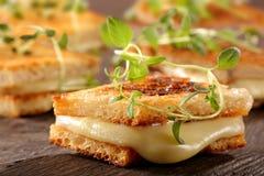 Nytt rostat bröd med ost och örter arkivfoto