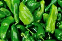 Nytt sälja för paprika arkivbild