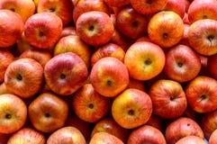 Nytt saftig vald hög av röda äpplen Färgrik fruktmodell arkivbilder