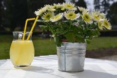 Nytt sammanpressad lemonad på en tabell, bredvid en blomkruka Royaltyfria Bilder