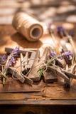 Nytt skördad lavendel som är klar att torka i bygd royaltyfri fotografi