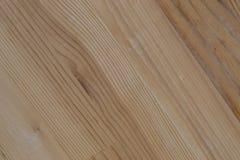 Nytt snitt för Wood fiber Arkivfoto