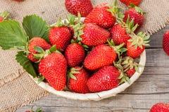 nytt srawberry Arkivfoto