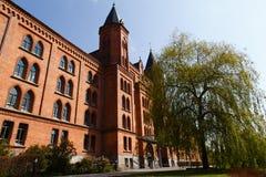 Nytt stadshus av Celle Royaltyfri Bild