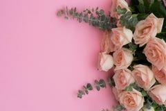 Nytt steg blommor Royaltyfri Foto