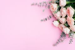 Nytt steg blommor Arkivbild