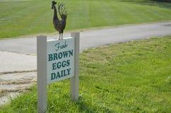 Nytt tecken för bruna ägg Royaltyfria Bilder