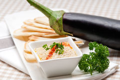 Dopp för aubergine för Moutabal babaghanoush Arkivbilder