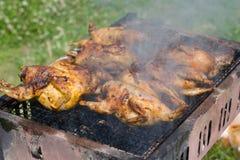 nytt trevligt för grillfest Arkivfoto
