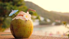 Nytt ungt kokosnötvatten Coctail på den tropiska strandstången phuket thailand 4K arkivfilmer