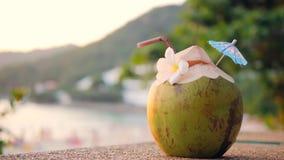 Nytt ungt thailändskt kokosnötvatten Coctail på den tropiska strandstången phuket thailand 4K arkivfilmer