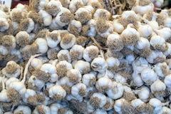 Nytt vald vitlök i azur korg på marknad Användbara grönsaker för kryddigt, krydda Makrofotolök Top beskådar royaltyfri fotografi