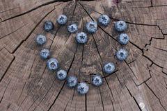 Nytt valda blåbär i träbunke Saftiga och nya blåbär med gröna sidor på den lantliga tabellen Blåbär på träBackg Arkivfoton
