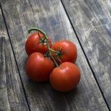 Nytt valda mogna röda tomater Royaltyfri Bild