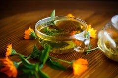 Nytt varmt te med calendulaen Arkivfoto