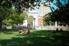 NYU Stock Foto