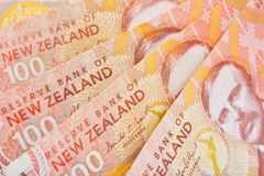 NZ现金 免版税库存照片
