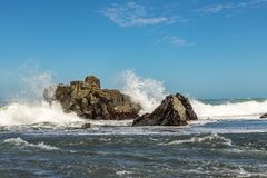 NZ ακτή Στοκ φωτογραφία με δικαίωμα ελεύθερης χρήσης