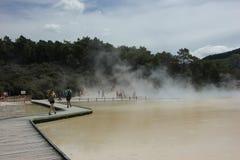 NZ, isola del nord, paese delle meraviglie termico di Waiotapu, il Distretto di Rotorua Fotografie Stock Libere da Diritti