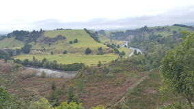 NZ-land Royaltyfria Foton