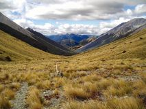 NZ Mountains. Bealy Cass Saddle hike in Arthur's Pass S. Island New Zealand stock image