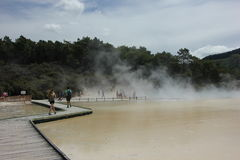 NZ, Nordinsel, thermisches Märchenland Waiotapu, Rotorua Lizenzfreie Stockfotos