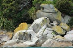 NZ södra ö, kust- sikt Abel Tasman National Park Arkivfoton