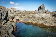 NZ Tidepool Στοκ εικόνα με δικαίωμα ελεύθερης χρήσης