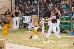 NZ woodcutting el equipo menor en Adelaide Show real, septiembre de 2014 Imágenes de archivo libres de regalías
