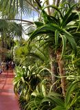 Oásis da arte e de ajardinar em jardins de Majorelle imagens de stock royalty free