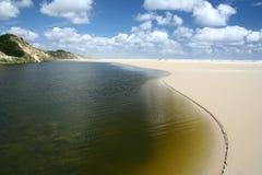 Oásis espectaculares das dunas de areia de Henty Fotos de Stock Royalty Free