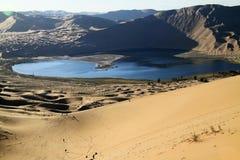 Oásis no deserto Fotos de Stock